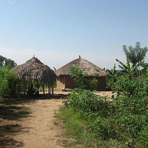 A rural dwelling