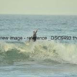 _DSC9493.thumb.jpg