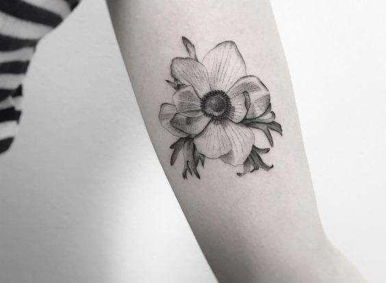 esta_brilhante_flor