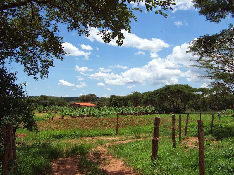 2007-02-12VakantieZambiaBotswanaNamibieZuidAfrika 135