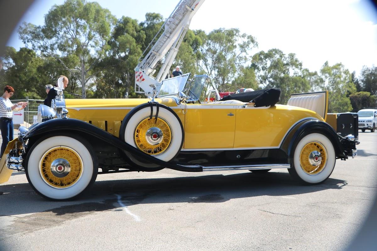 1931 Packard Super 8 Roadster 05.JPG