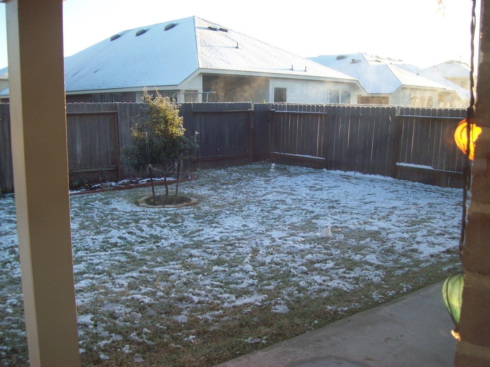Snow Day - 101_5992.JPG