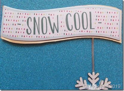 Snow Cool Card