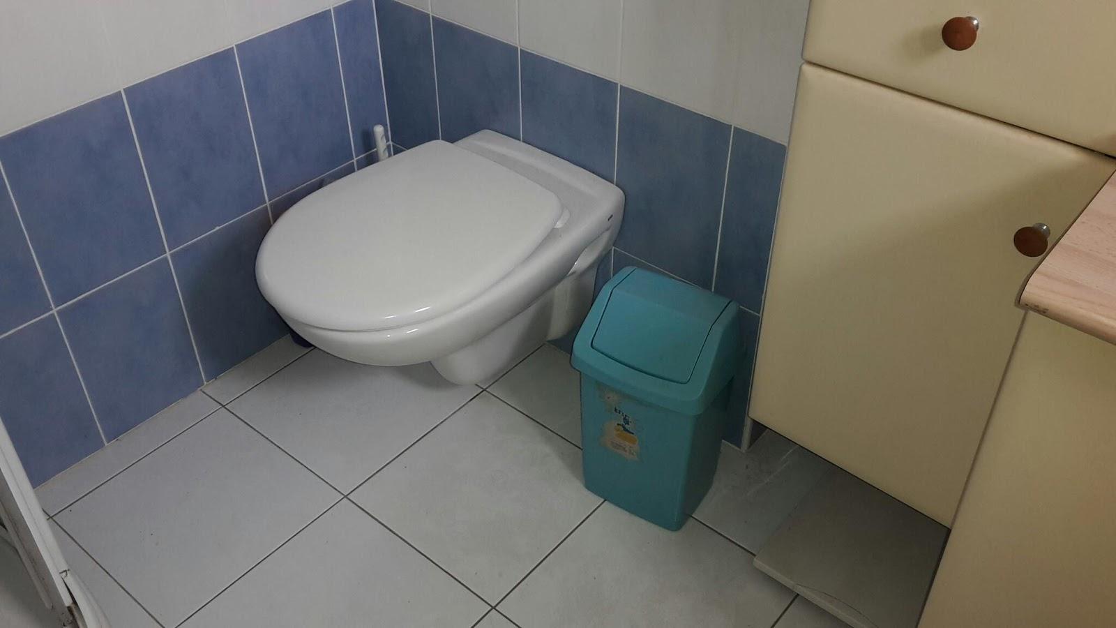 Champignon Dans Salle De Bain Galerie Dinspiration Pour La - Champignon salle de bain