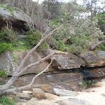 Back of Castle Rock Beach (82366)
