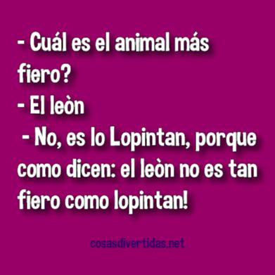 [animal+mas+fiero%5B2%5D]