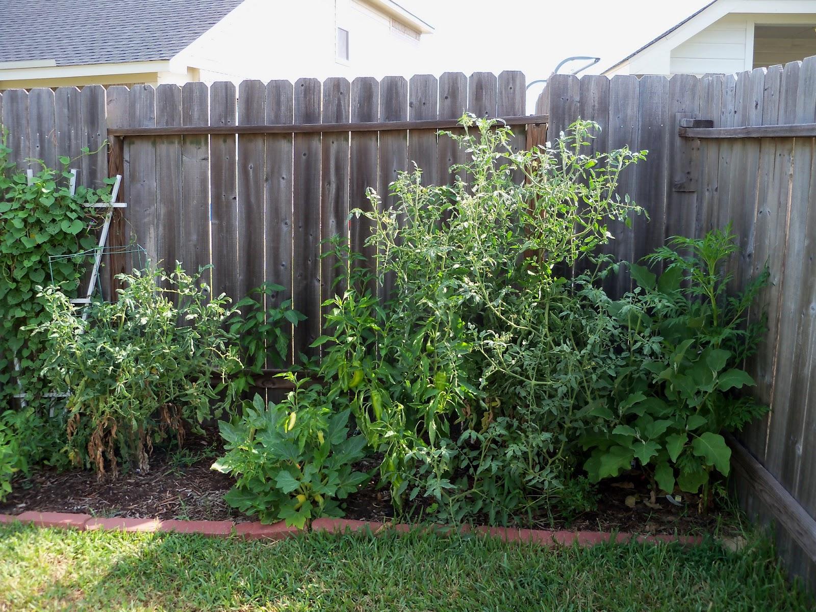 Gardening 2011 - 100_0061.JPG