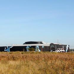 Yonex dutch open 2011