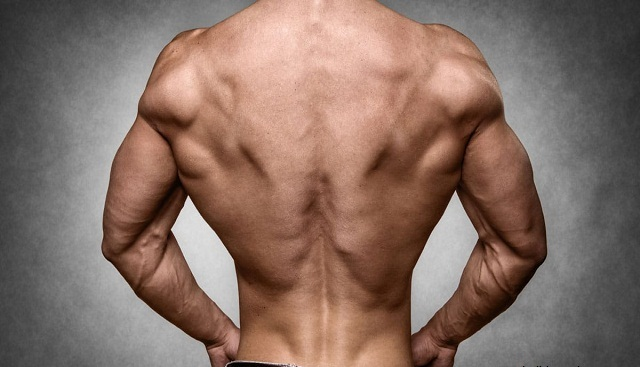 Must Do Back Moves to Build A Massive Back