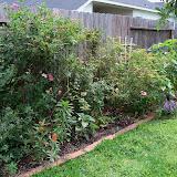 Gardening 2013 - 115_6054.JPG