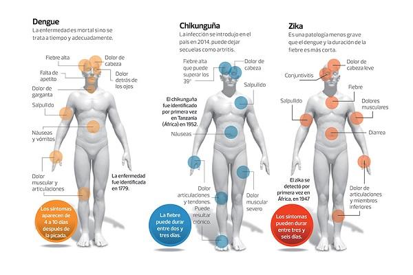 Enfermedades que el zancudo transmite en El Salvador