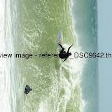 _DSC9642.thumb.jpg