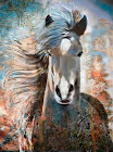 """The """"Fall Yearling"""" piece from the """"2014"""" collection"""