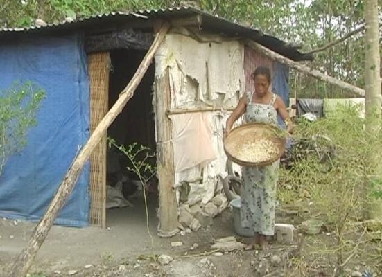 berita foto video sinar ngawi terbaru: Pasutri ini hidup ditengah hutan desa Canthel dengan kondisi mengenaskan