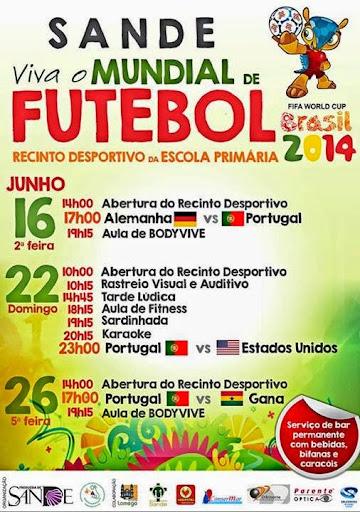 Viva o Mundial de Futebol 2014 - Sande - Lamego