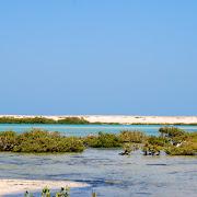 Wyspy Qulaan - Hamata.jpg