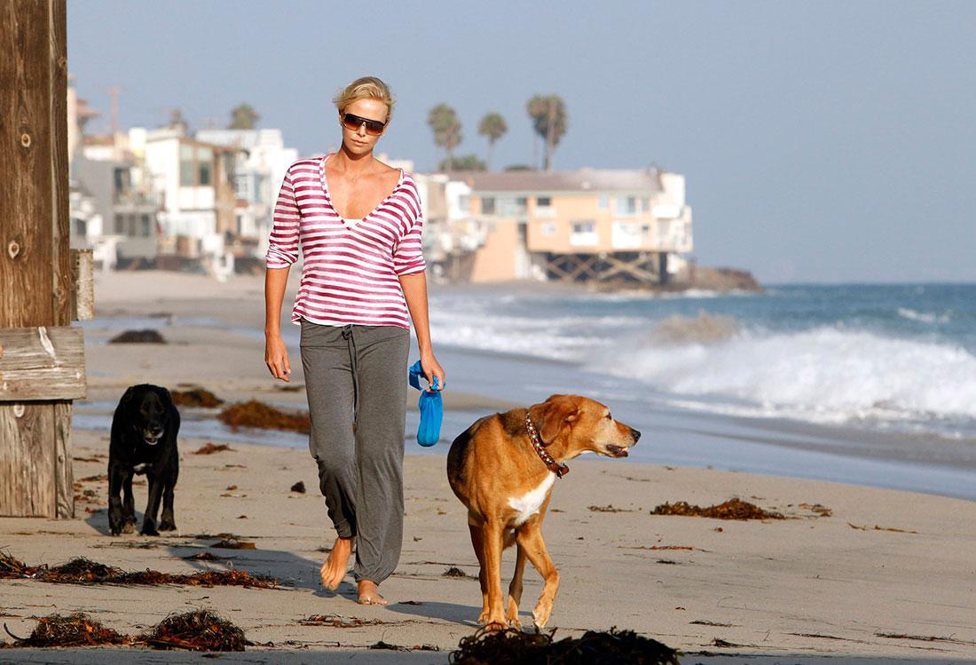 Perros acogidos por famosos: Charlize Theron y Tucker