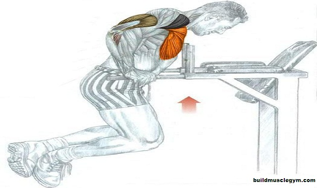 A step by step guide: Tricep dips