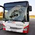 غزال يصطدم بحافلة في النمسا العليا فيجرح شخصين