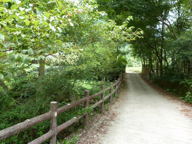 TAIWAN.Dans la région de Miaoli - P1080467.JPG