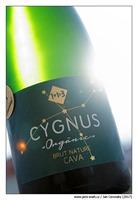 U-Més-U-Fan-Tres-Cygnus-Orgànic-Brut-Nature-Cava-Reserva