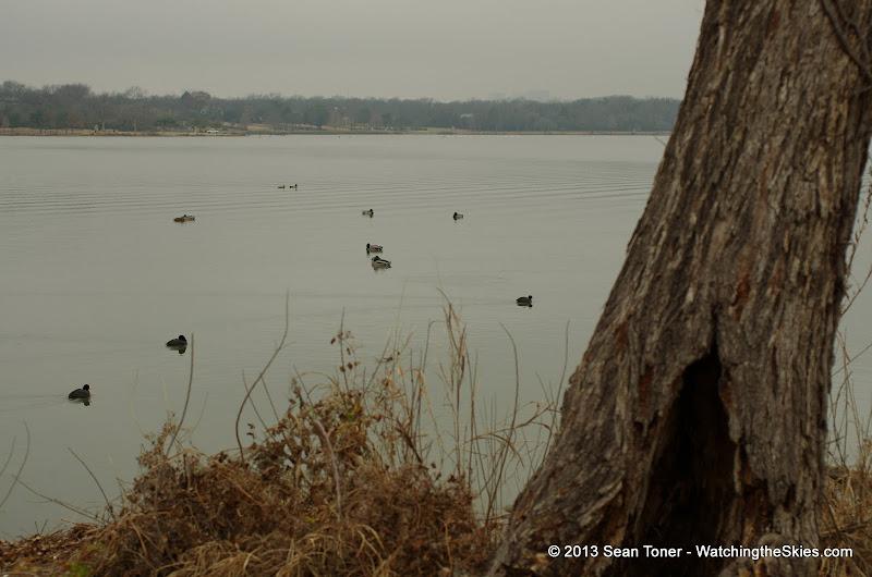 01-26-13 White Rock Lake - IMGP4346.JPG