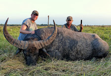 Mr Brandon Ivie USA took this massive high scoring bull, 104+SCI. The bases on these horns were 19+ inches, they don't get much thicker.