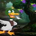 Games4King - Domestic Duck Escape