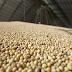 Preço dos principais produtos agropecuários sobe no primeiro trimestre