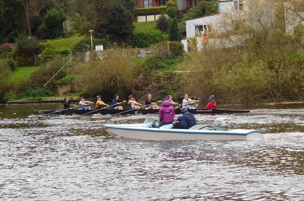 [4+scullers%5B6%5D]
