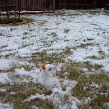 Snow Day - 101_5982.JPG