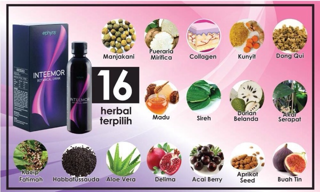 16 herbal terpilih ramuan inteemor