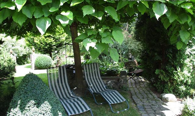 Unter dem Trompetenbaum bei 32 Grad Hitze