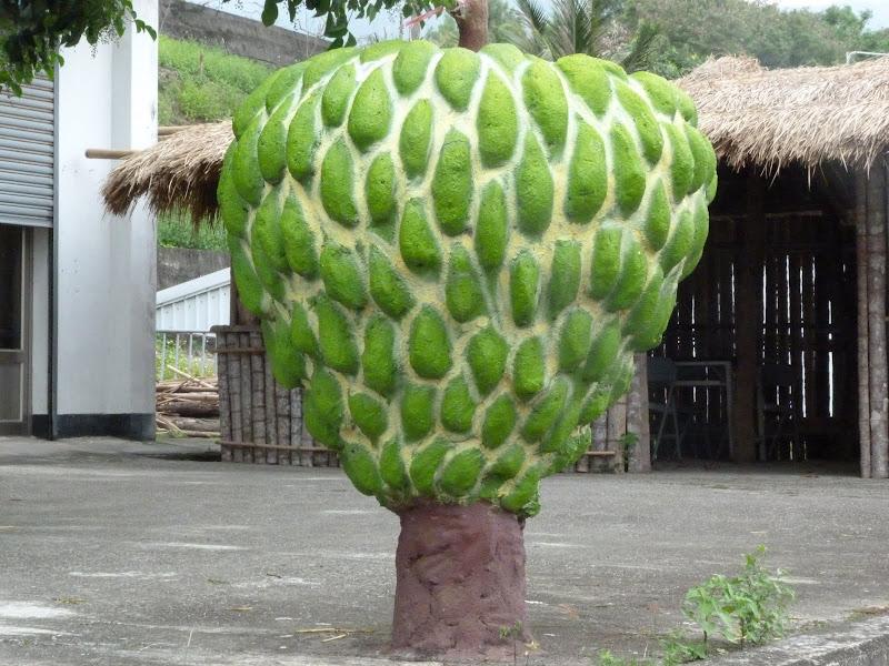 fruit quelque fois apppelé Tête de Bouddha