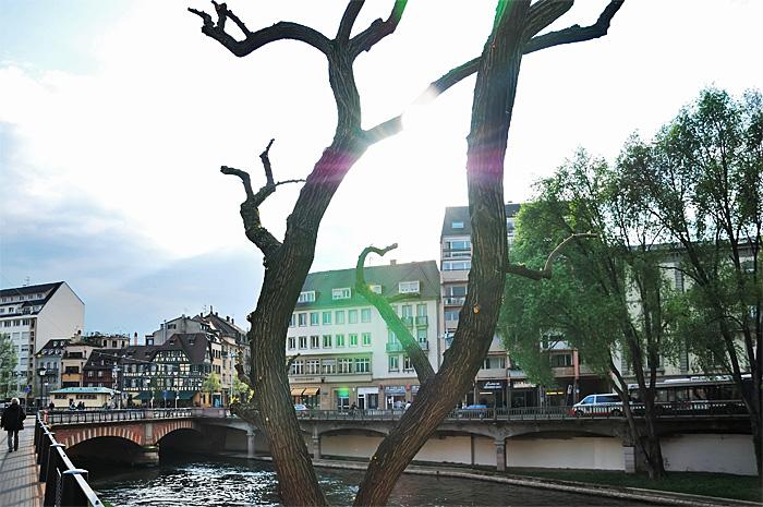 Strasbourg06.JPG