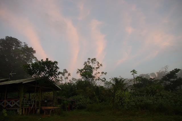 Début de journée aux Carbets de Coralie (Crique Yaoni), 31octobre 2012. Photo : J.-M. Gayman