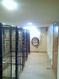 Brand new kennel