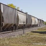 11-08-14 Wichita Mountains and Southwest Oklahoma - _IGP4685.JPG