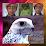 بدر الدهمي's profile photo