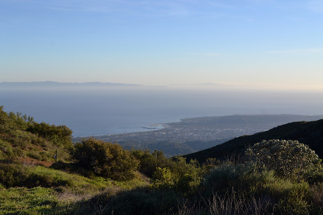 Santa Barbara from Cold Spring Saddle