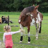Paard & Erfgoed 2 sept. 2012 (34 van 139)