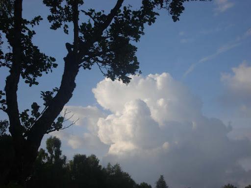 Sommerlejr 2007 166.jpg
