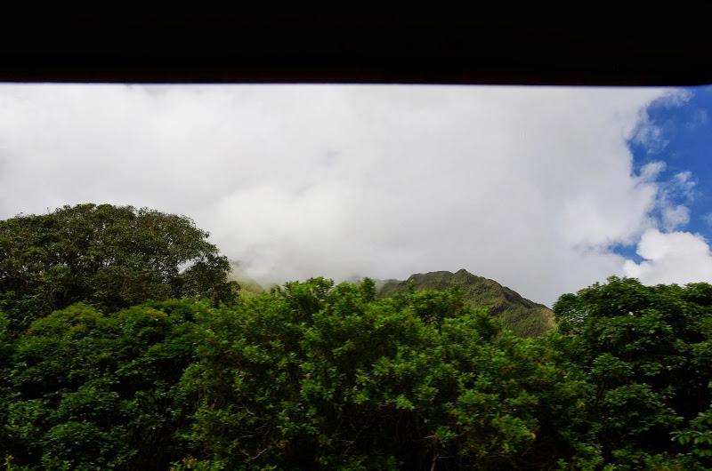 06-18-13 Waikiki, Coconut Island, Kaneohe Bay - IMGP6987.JPG