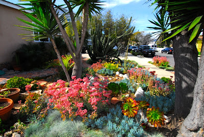 Mar Vista Green Garden Showcase 4127 Sunnyside Avenue