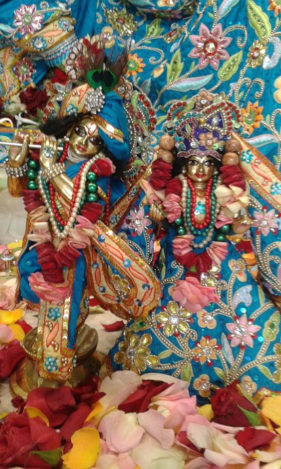 ISKCON Nairobi Deity Darshan 01 Feb 2016 (18)