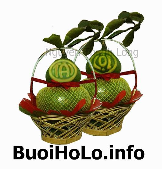 Buoi-Ho-Lo-Tai-Loc-lam-Qua-Bieu-Cao-Cap-Qua-Tet-Y-Nghia-2014
