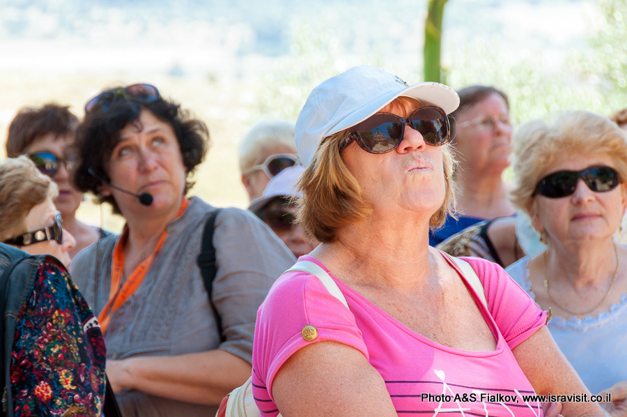Гид экскурсовод в Израиле Светлана Фиалкова.