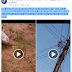 Mighty Witch Put To Shame As She Has Been Electrocuted By High Tension Wires In Benin.