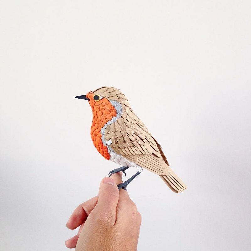 diana-beltran-herrera-birds-13