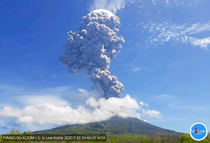 Gunung Ili Lewotolok Meletus, Sebanyak 2.782 Jiwa Mengungsi
